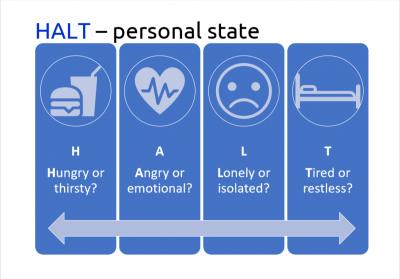 HALT Personal State